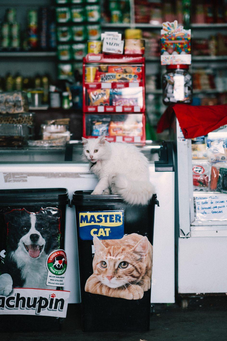 ร้านขายอาหารสัตว์เลี้ยง